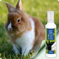 добавка за зайци